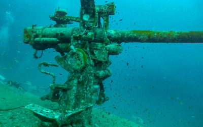 Diving The HTMS Sattakut Shipwreck In Koh Tao, Thailand
